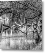 Tranquil May 2016 Bw Metal Print