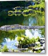 Tranquil Pond Metal Print