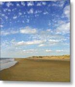 Tranquil Seashore Metal Print