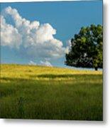 Tranquil Solitude Billowing Clouds Oak Tree Field Art Metal Print
