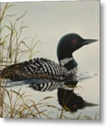 Tranquil Stillness Of Nature Metal Print by James Williamson