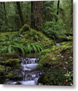 Tranquility In The Forest Metal Print