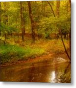 Tranquility Stream - Allaire State Park Metal Print