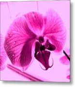 Translucent Purple Petals Metal Print