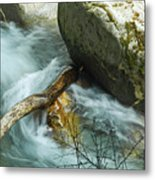 Trapped River Log Metal Print