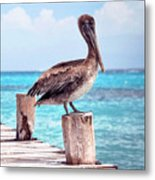 Treasure Coast Pelican Pier Seascape C1 Metal Print