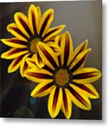 Treasure Flowers With Light Flares Metal Print