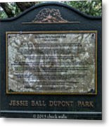 Treaty Oak 12 14 2015 023 Metal Print