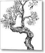 Tree 14 Metal Print