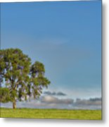 Tree Above The Clouds Metal Print