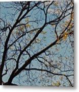 Tree Against The Sky Metal Print