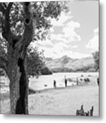 Tree And People By The Lake Metal Print