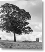 Tree And The Cage Tower In The Distance In Lyme Park Estate In B Metal Print
