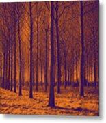 Tree Art 56y Metal Print