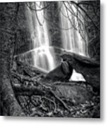 Tree At Falls In Black And White Metal Print