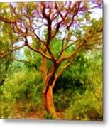 Tree At Kew Gardens Metal Print