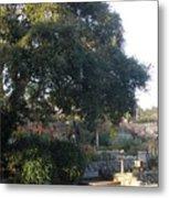 Tree At Mission Carmel Metal Print