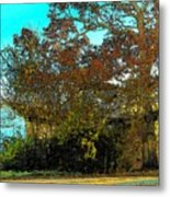 Tree At The Station Metal Print