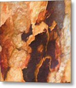 Tree Bark Collection # 50 Metal Print