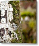 Tree Bark Graffiti - H 04 Metal Print