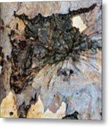Tree Barks Pattern #13 Metal Print