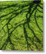 Tree Branch Shadow Metal Print