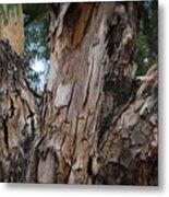 Tree Branch Texture 3 Metal Print