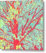 Tree Branches 8 Metal Print