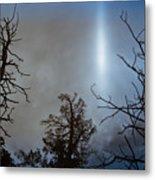 Tree Flash Metal Print