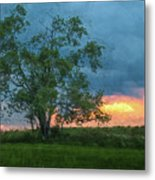 Tree Impression Metal Print
