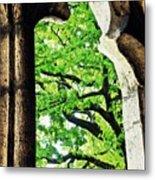 Tree In A Medieval Frame Metal Print