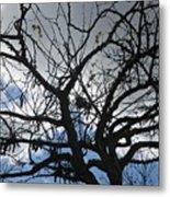 Tree In Benalmadena Metal Print