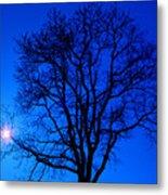 Tree In Blue Sky Metal Print