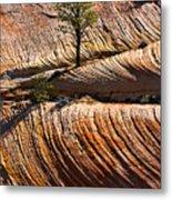 Tree In Flowing Rock Metal Print