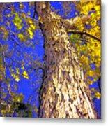 Tree In Motion Metal Print