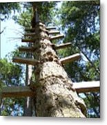 Tree Ladder Metal Print