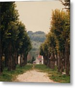 Tree Lined Pathway In Lyon France Metal Print