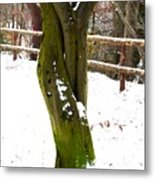 Tree Lovers Metal Print