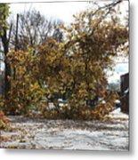 Tree Meets Hurricane Sandy By The Fair Lawn Nj Post Office Metal Print