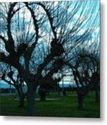 Tree Of Art Metal Print