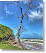 Tree Of Clouds Metal Print