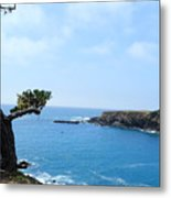 Tree On A Coastline Metal Print