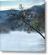 Tree Over Gasconade River Metal Print