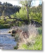 Tree Over The River Metal Print