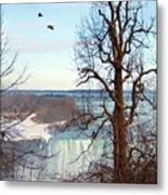 Tree Overlooking The Falls Metal Print