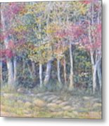 Tree Pageant Metal Print