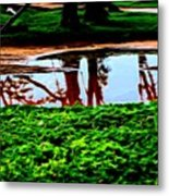 Tree Reflections Metal Print