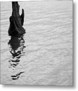 Tree Reflections, Rest In The Water Metal Print