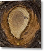 Tree Sap Metal Print