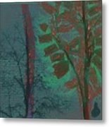 Tree Shadows At Midnight Metal Print